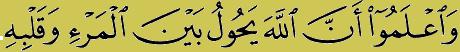 Quran verse 8-24